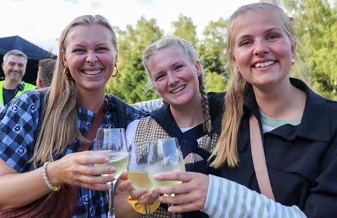 /media/8057/smukfest-smaafest-drikkevare-bar-guide.jpg